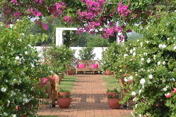 Brahmasthan, Indien, Gärten